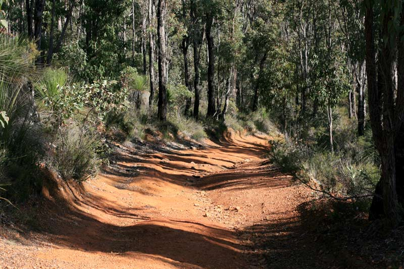 Downhill-section